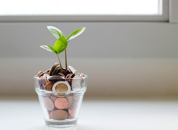 Plant Growing From Money